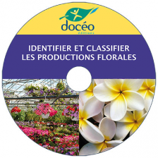 CD Identifier et Classifier les productions florales