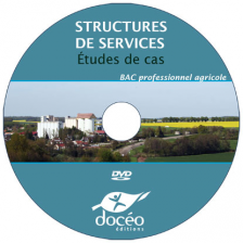 Video DVD - Structures de services : études de cas